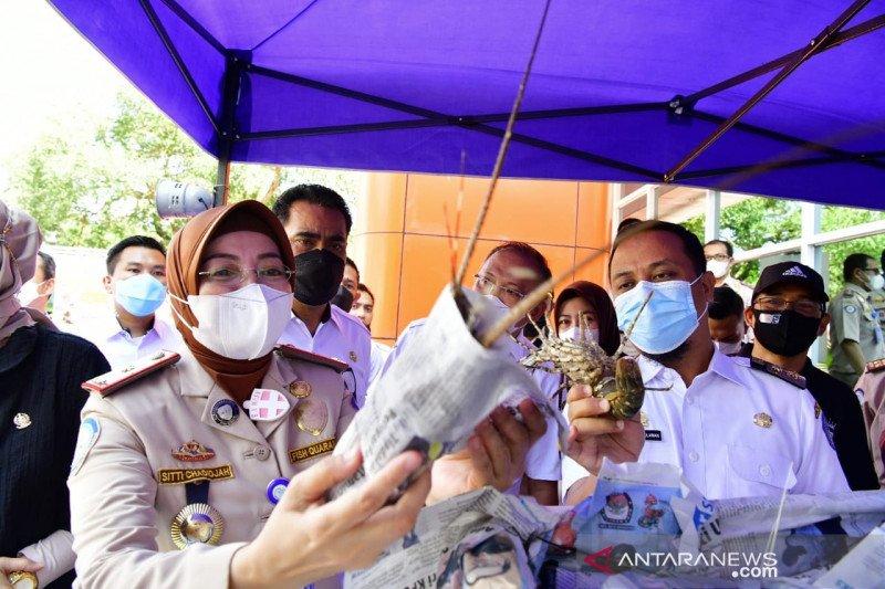Plt Gubernur Sulawesi Selatan lepas ekspor 2 ribu ton komoditi perikanan