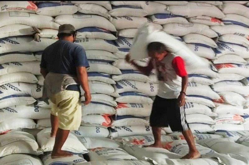 Bulog Sampit pastikan stok beras aman hingga usai lebaran