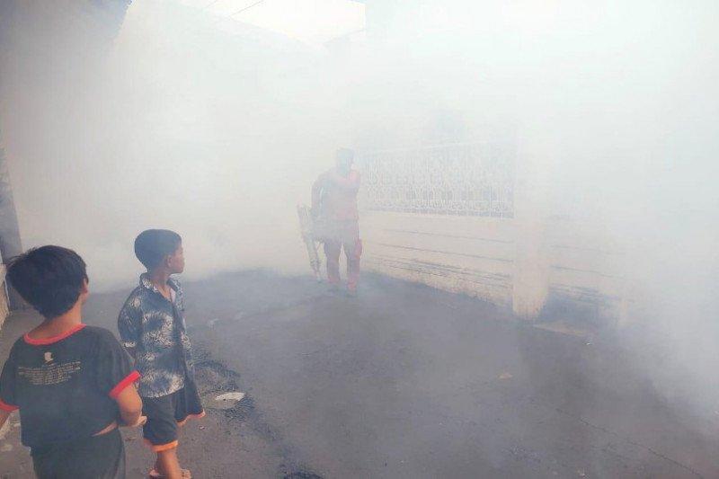 Warga Pekalongan diminta waspadai DBD dan chikungunya