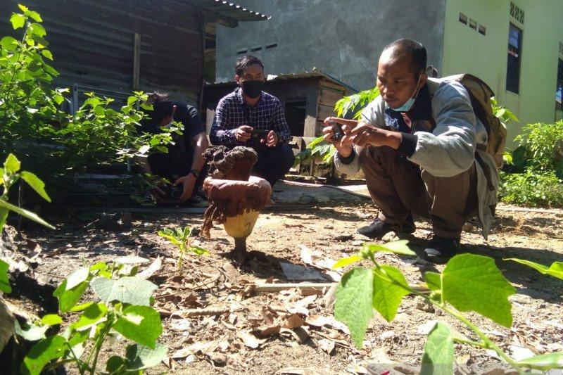 Sekuntum bunga bangkai tumbuh di pekarangan rumah warga Tanjungpinang