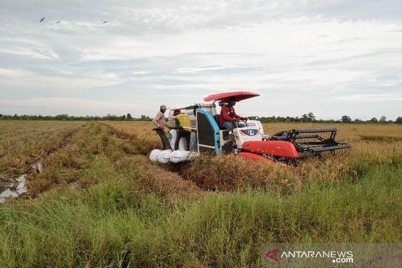 DPRD Seruyan harapkan sumber daya penyuluh pertanian ditingkatkan