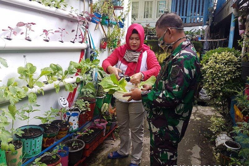Marlinda, Srikandi BRI pencetus Kampung Sayur Palembang