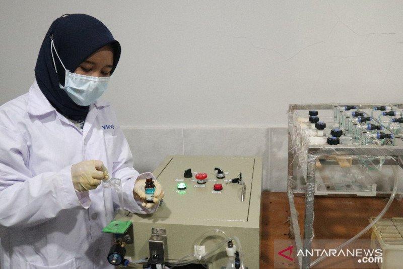 Balitbangtan melakukan ekspose uji lanjutan eucalyptus pada virus SARS-COV-2