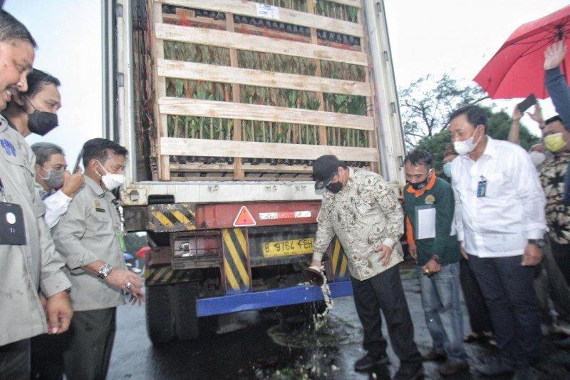 BNI berikan KUR kepada UKM untuk dukung ekspor tanaman hias