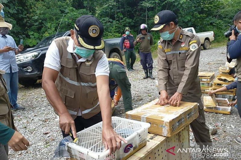 Balai Karantina-BKSDA lepaskan ratusan burung kembali ke alam