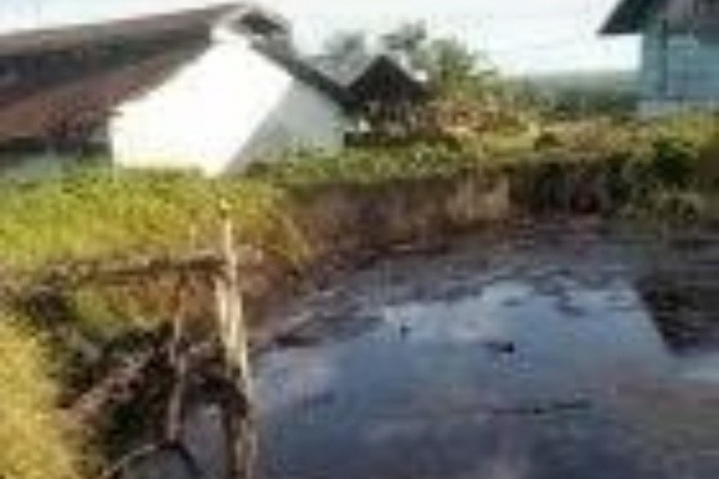 PTPN XIV klarifikasi insiden kebakaran kolam limbah di Lutim