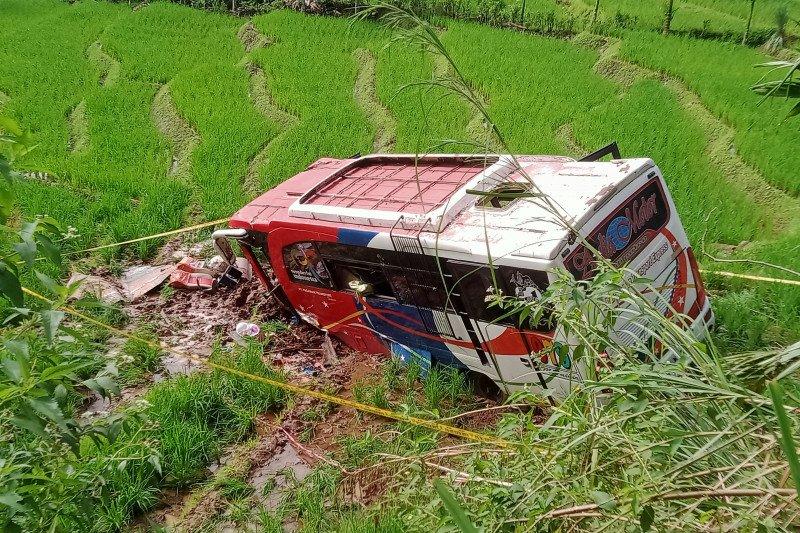 Bus di Pasaman Sumbar terjung ke sawah, tiga meninggal