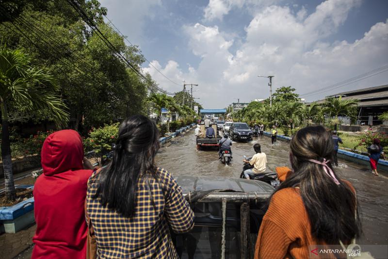 Ilmuwan Indonesia jangan anggap enteng prediksi Jakarta tenggelam, sebut MUI