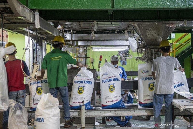 3,2 juta ton pupuk bersubsidi sudah tersalurkan pada petani