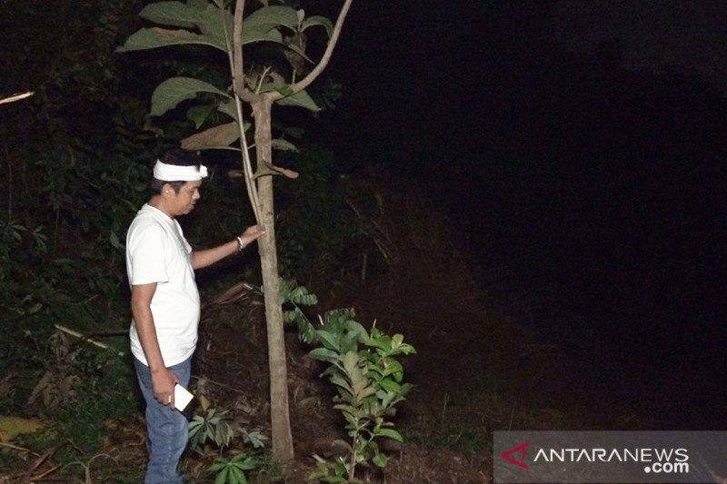 Dedi Mulyadi desak KLH tindak perusak hutan di Karawang