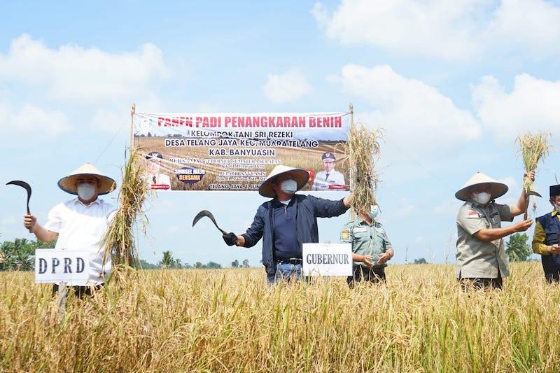 Petani Banyuasin didorong tingkatkan produktivitas lahan sejalan dalam Food Estate