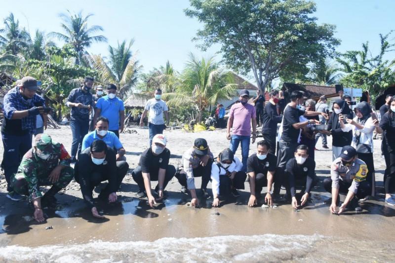 Wabup Lombok Utara lepas tukik peringati Hari Lingkungan Hidup se-Dunia