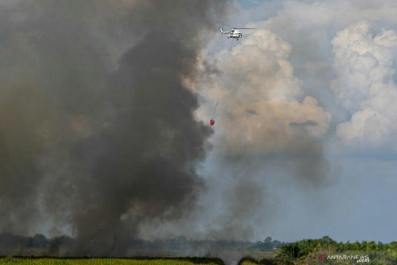 BPBD:  Tiga kabupaten di Sumsel alami kebakaran hutan dan lahan