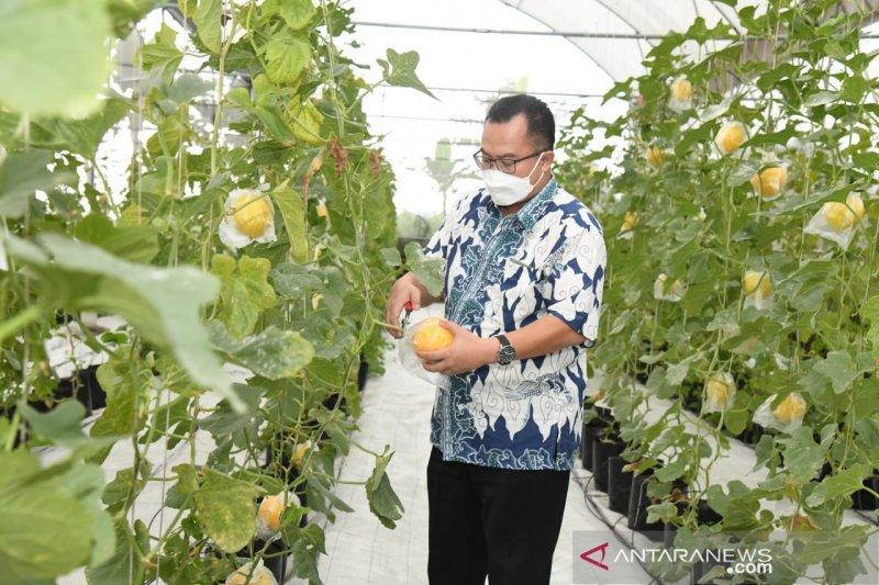 IPB dorong mahasiswanya jadi petani milenial