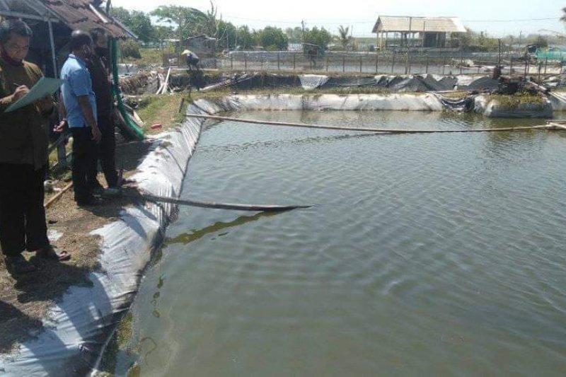 Realisasi produksi ikan budi daya di Kulon Progo mencapai 29,48 persen