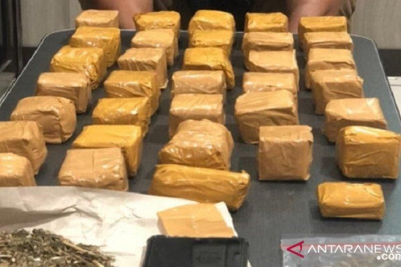 Polres Sukabumi tangkap bandar narkoba pemilik 1,2 kg ganja kering