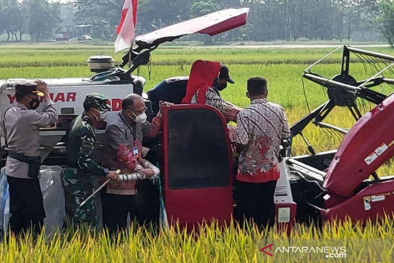 BI dorong optimalisasi produksi beras di Sukoharjo