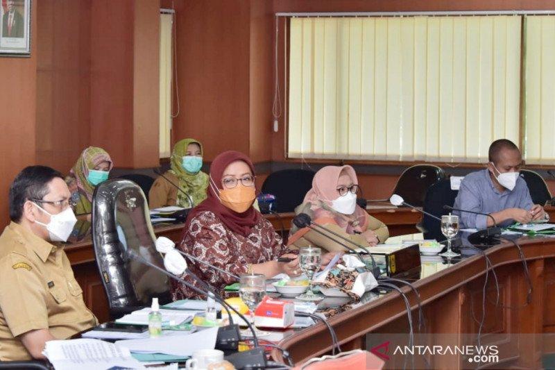 Ekspor tanaman hias Bogor raup devisa hingga Rp700 juta per hari