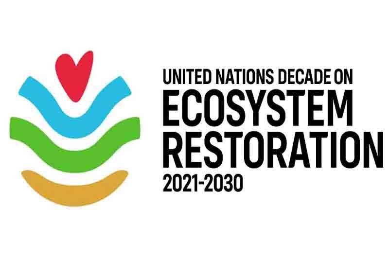 BNF terpilih sebagai pendiri UND Restorasi Ekosistem
