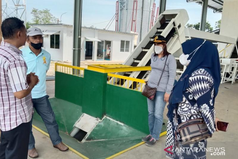 Pemprov Sulsel bangun pabrik benih jagung berkapasitas 1.000 ton