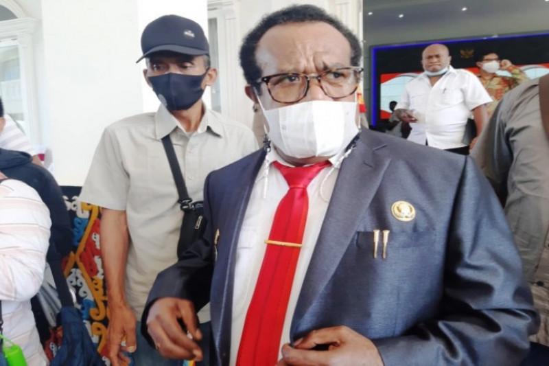 DOB Provinsi Papua Selatan diusulkan dipercepat