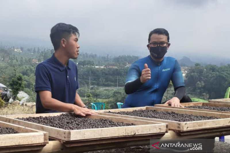 Kaum milenial di Temanggung mulai tertarik geluti kopi