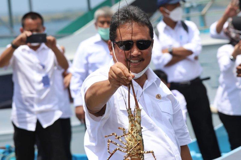 Menteri KKP: Ekonomi biru perlu dukungan penguatan riset