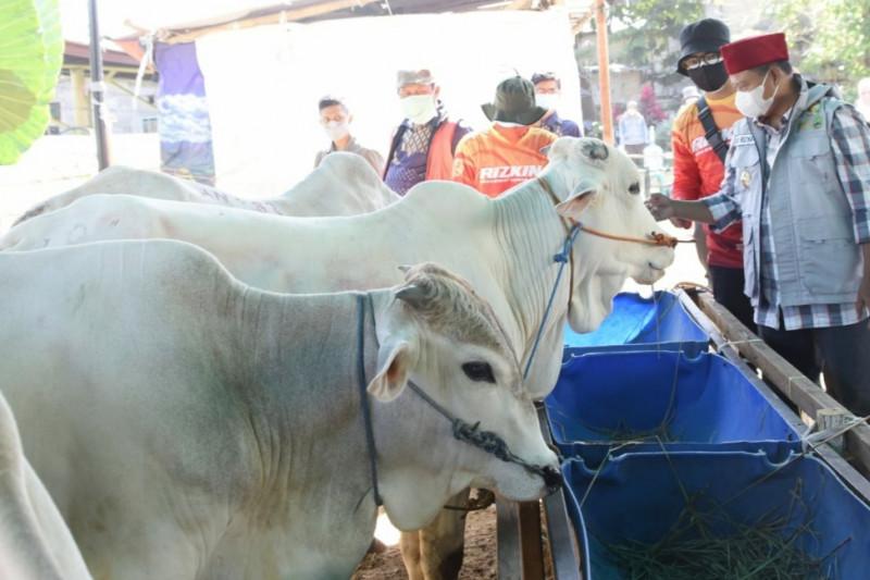 Wagub Jawa Barat apresiasi sistem daring di pasar hewan Cimahi