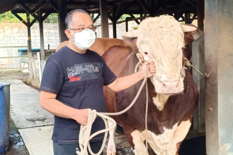 Masjid Pusdai Jabar terima sapi kurban dari Presiden Jokowi