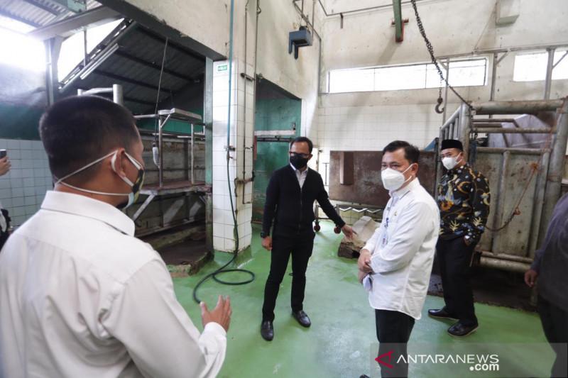 RPH Bubulak Kota Bogor terima order pemotongan 400 hewan kurban