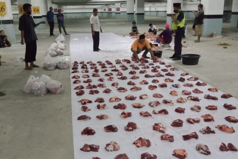 Distan Mataram menemukan 31 kasus cacing hati pada hewan kurban