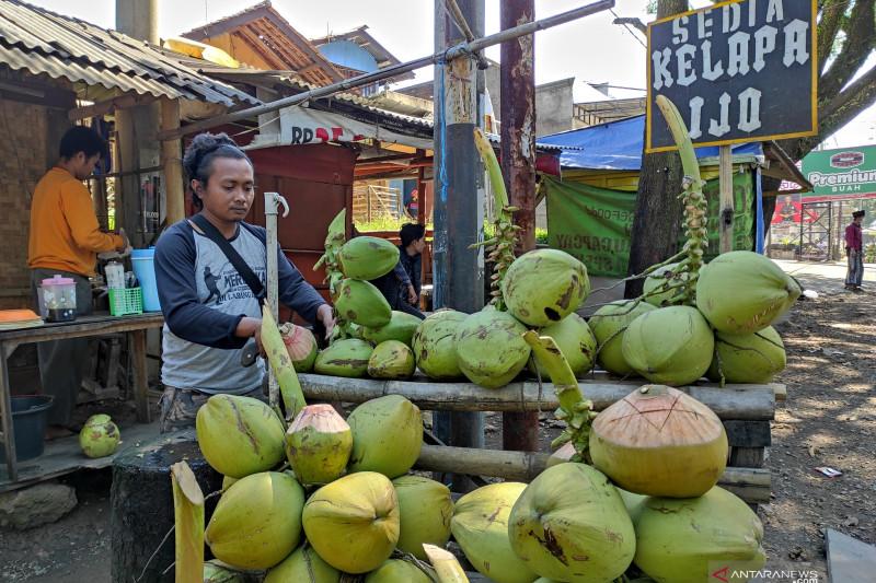 Pedagang kelapa muda di Cianjur raup keuntungan selama PPKM