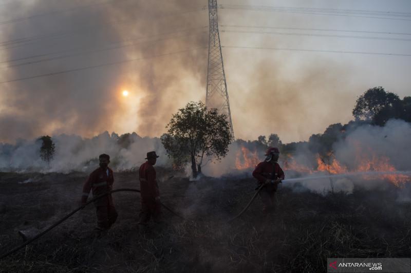 Pemadaman Kebakaran Lahan di Pulau Semambu