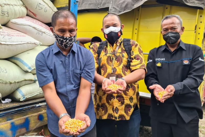 Suroto peternak ayam yang aksinya viral dikirimi 20 ton jagung dari  Jokowi
