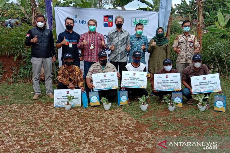 Pemkot Bogor gandeng BJB dan Minaqu bantu modal petani tanaman hias