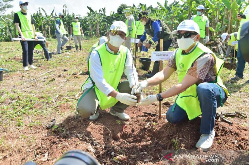 Pemkab Bogor bangun hutan kota di bekas TPS Pondok Rajeg