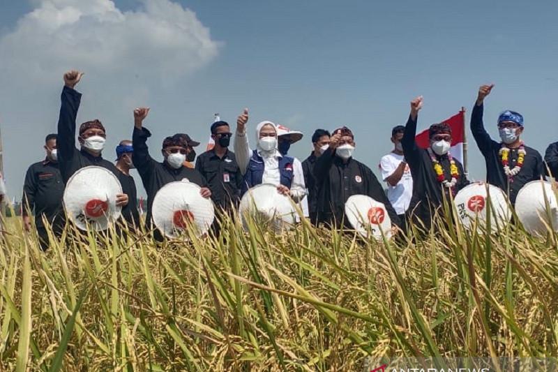 Pemprov Jawa Barat seimbangkan teknologi dan sektor pertanian