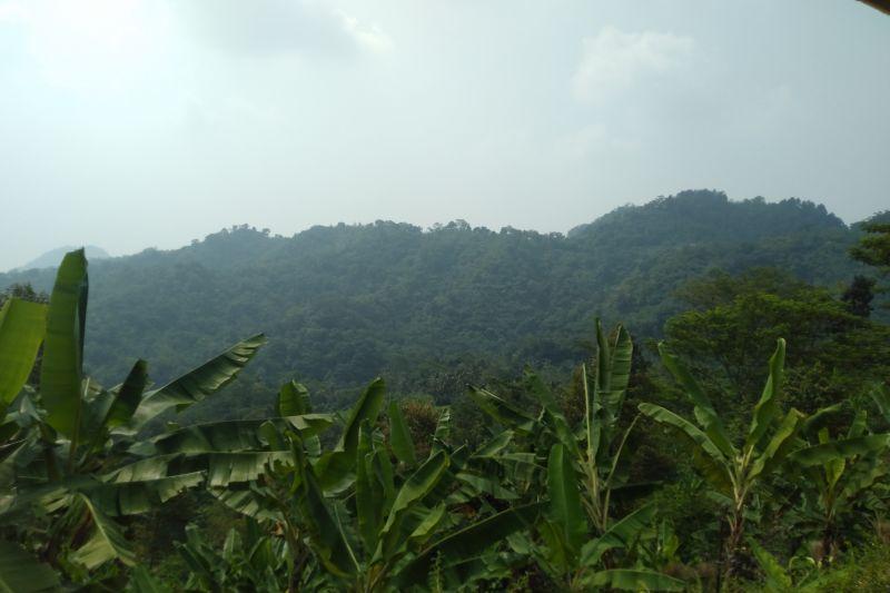 Kawasan hutan Pangkalan Karawang jadi lokasi praktikum kampus Unsika