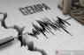 Gempa bumi magnitudo 4,6 mengguncang Pangandaran
