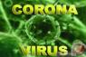 11 pasien COVID-19 di Bangka Selatan sudah sembuh