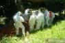 Empat hari, sebanyak 10 orang pasien COVID-19 meninggal di Sultra