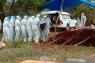 Kasus COVID-19 meninggal di Sulawesi Tenggara kembali bertambah menjadi 210