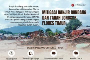 Mitigasi banjir bandang dan tanah longsor Flores Timur